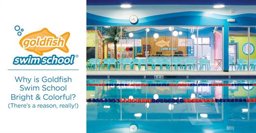 Why is Goldfish Swim School Bright and Colorful? (There's a reason, really!)