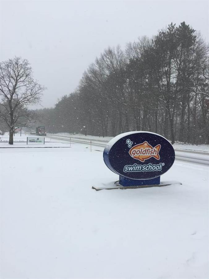 Goldfish Swim School Sign in the snow