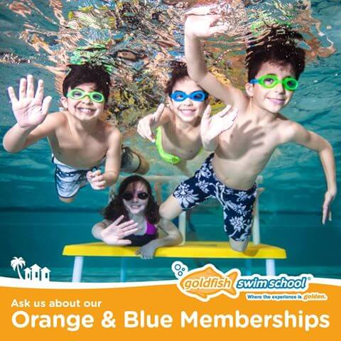 Orange and Blue Membership Banner